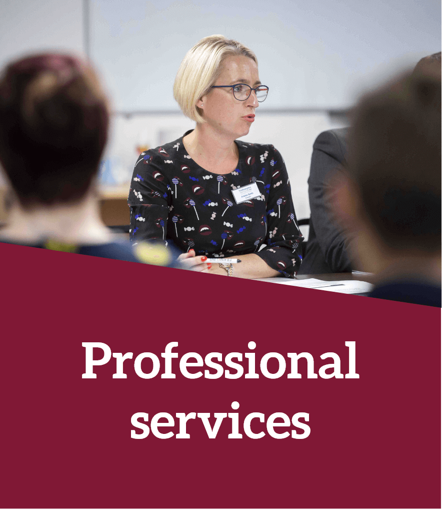 discover professional services